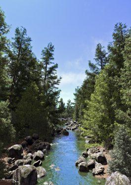El Paso Oasis -Nature Scene